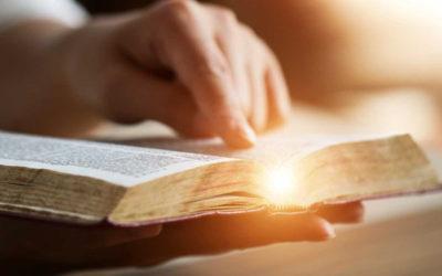 讀神的話靈魂堅定興盛