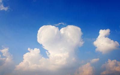 用愛分享愛